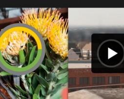 Digital Tutors Intro Photoshop CS6  http://Glukom.com