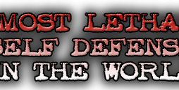 The Self Defence Training System Damian Ross http://Glukom.com