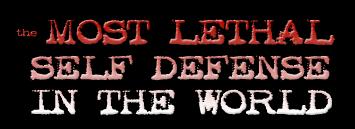 The Self Defence Training System Damian Ross http://Glukom.com
