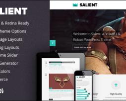Salient - Responsive Portfolio & Blog Theme http://Glukom.com