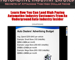 Automotive Industry Exposed