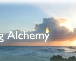 Jim Self - Mastering Alchemy Program Level 1