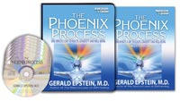 Gerald Epstein - The Phoenix Process