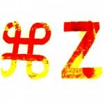 Command Z - 4 Week Intensive Training